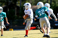 Dare County Youth Football Cowboys versus Dolphins 10/26/13